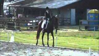 Sword dressage test