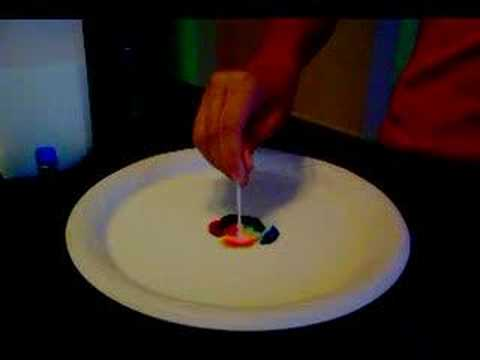 6th Grade Science Project - YouTube