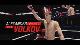 Все бои Александра Волкова в приложении M-1 Global TV | All fights of Alexander Volkov