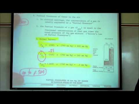 RESPIRATORY PHYSIOLOGY by Professor Fink