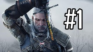LET THE HUNT BEGIN! - The Witcher 3: Wild Hunt - Walkthrough / Playthrough / Gameplay- Part 1