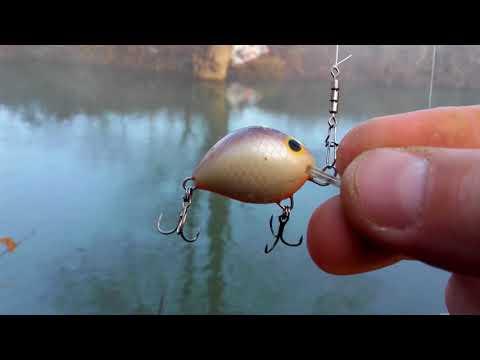 Pecanje klena na varalicu - Döbelfischen - Chub fishing