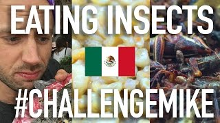MEXICO: EATING INSECTS