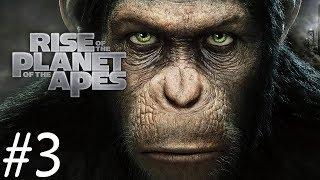 សង្រ្គាមស្វានឹងមនុស្សវគ្គ៣ - Planet of the Apes: Last Frontier #03