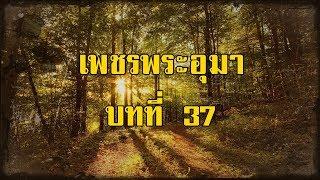 เพชรพระอุมา ภาคที่ 3 มงกุฎไพร บทที่ 37   สองยาม