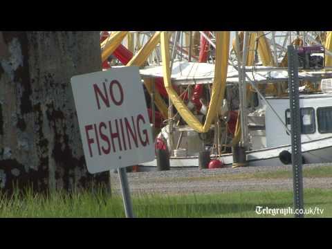 Sports Fishing season devastated before it began by Gulf spill.