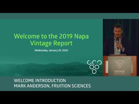 2019 Napa Vintage Report - Mark Anderson - Introduction