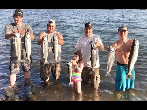 """""""How-To"""" 