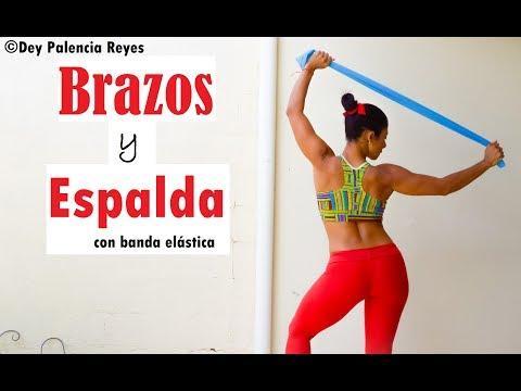 BRAZOS Y ESPALDA CON BANDA ELASTICA - RUTINA 520 |Brazo/Espalda Definidos |Dey Palencia