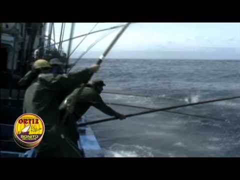 PIZZA ROMANA 4 SABORES FACIL EN BANDEJA DE HORNO from YouTube · Duration:  6 minutes 24 seconds