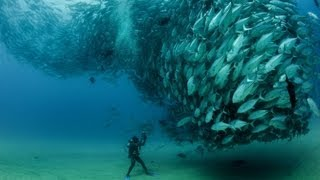 Repeat youtube video World's most amazing photos (Part 22) | Blow your Mind
