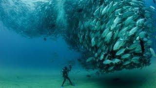 World's most amazing photos (Part 22) | Blow your Mind