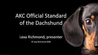 AKC Dachshund Standard Presentation by Lexa Richmond