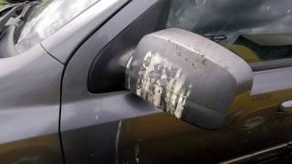 Чупакабра напала на машину