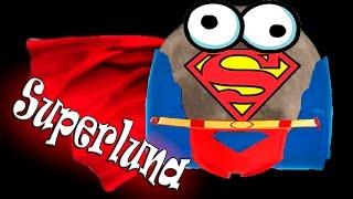 la superluna era falsa eh vlog 42