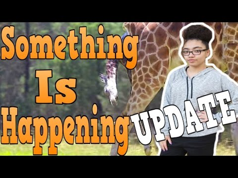 Thumbnail: SIGNS OF ACTIVE LABOR Evening Pregnancy Giraffe Update RESPONSE