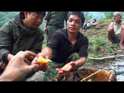Hallucinogen Honey Hunters - Hunting mad honey - documentary