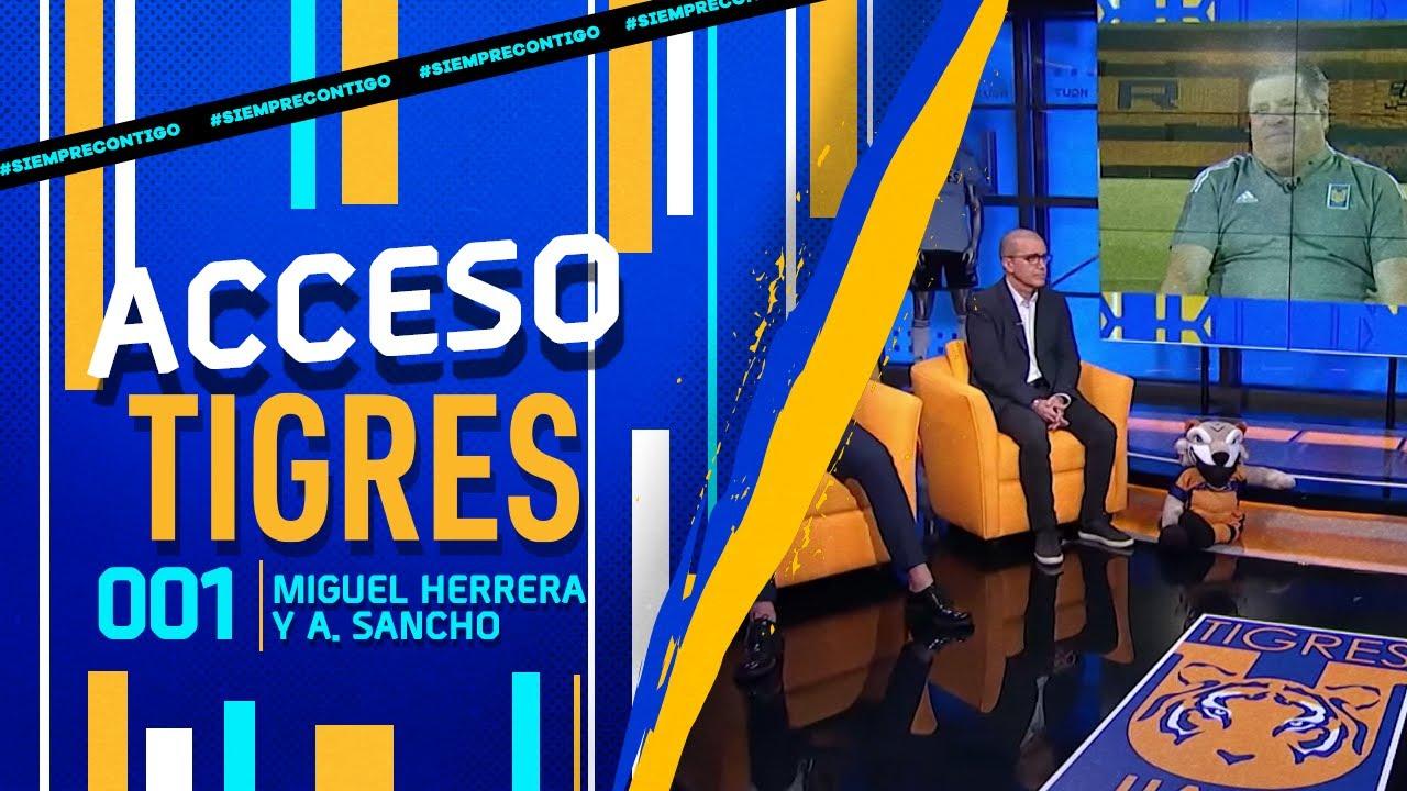 📺 ACCESO TIGRES - 01 | Miguel Herrera y Antonio Sancho.