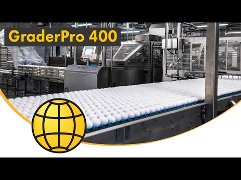 GraderPro - Egg Grading and Packing Machine