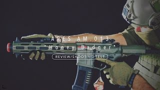 ARES Amoeba AM 013 Honey Badger Review Shooting Test