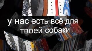 зоомагазин СПОРТ ДОГ в Омске 2(В ассортименте нашего магазина предствлены разнообразные товары для спорта, активного отдыха и ухода..., 2014-02-09T17:14:03.000Z)