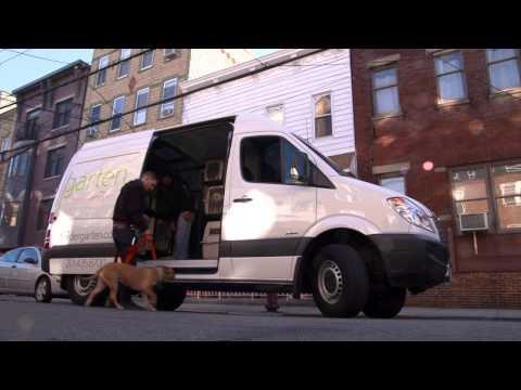 Freightliner Sprinter Cargo Van Testimonial - Dog Daycare