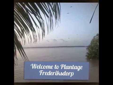Spontaneous trip to Plantage Frederiksdorp Suriname