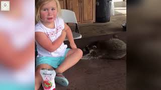 Funny pet fails compilation- Try not to laugh