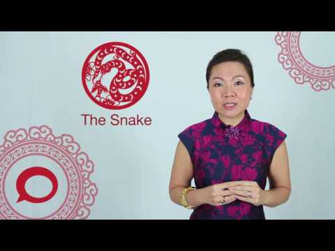 The Snake - 2017 Chinese Zodiac Predictions With Jessie Lee - The Coverage