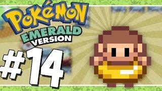 Pokémon Emerald: Grass Run | Seashore House - 14 (Game Boy Advance Gameplay Walkthrough)