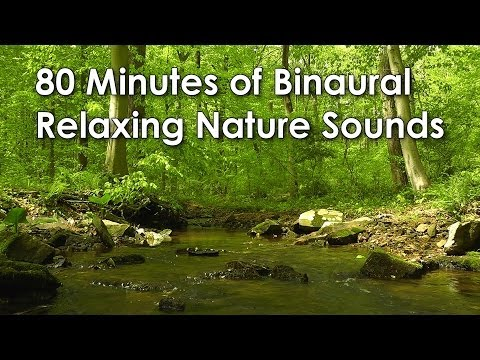 80 Minutes of Binaural Woodland Ambience ( Nature Sounds Series #8) Trickling Stream & Bird Sounds