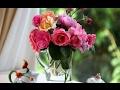 ASMR/ АСМР/ DIY/ Аппликация - Цветы в вазе