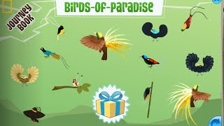 Paradise Party - Animal Jam Journey Book Cheat Guide
