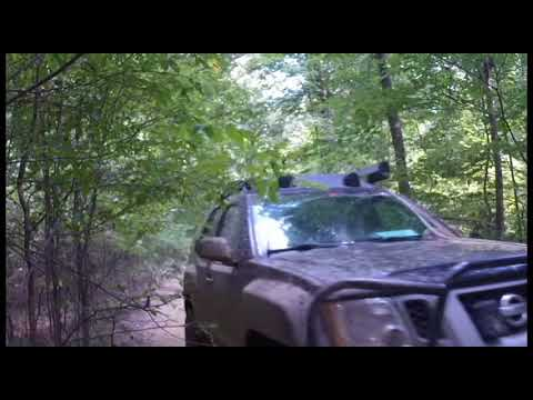 392 Land Between the Lakes Off-Road Trail - Tennessee