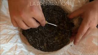Les origines du thé blanc chinois Baimudan