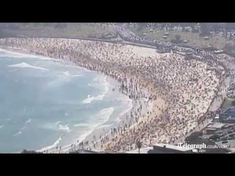 Shark scares swimmers out of water on Bondi Beach in Australia