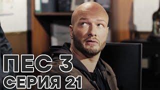 Сериал ПЕС - 3 сезон - 21 серия - ВСЕ СЕРИИ смотреть онлайн | СЕРИАЛЫ ICTV