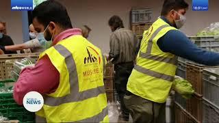 MKA Khidmat e Khaliq Department, Distributing Food,Masks & Sanitizer to the needy Peopels