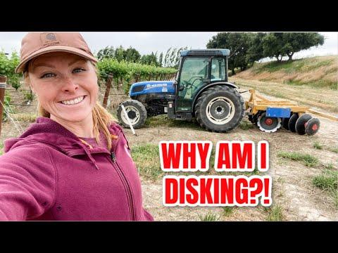 Why Am I Disking The Vineyard?!