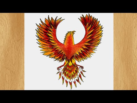 How to Draw a Phoenix I Phoenix Bird Drawing Tutorial