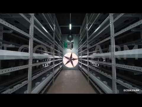 видео: Майнинг ферма на базе морского контейнера (gpu, 1080 ti)
