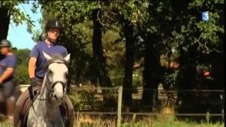 Avant de partir en Angleterre, les chevaux du Puy du Fou sont dressés à Cholet