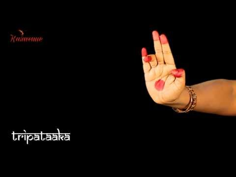 Bharatanatyam - Learn Asamyuta Hasta [HD] (Video Lesson for Beginners)