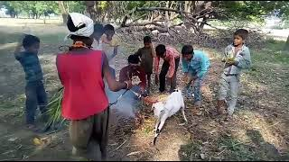Children Vivah Drama Video @@##(Song) R.K.