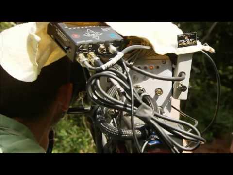 Охотники Восточной Африки - Видео онлайн