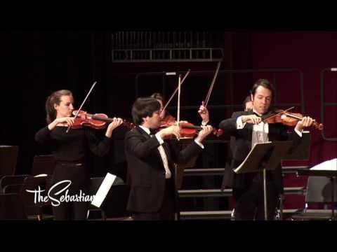 Mozart: Eine kleine Nachtmusik, K. 525 (1787) - the Sebastians
