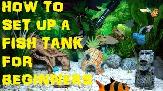 How To Set Up A Coldwater/tropical Freshwater Fish Tank Aquarium For Beginners :)