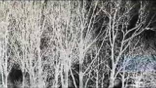The Hope Blister - Sideways (example) - Datenverarbeiter Video