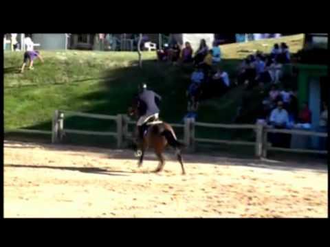 Top Star VDL - Brasilia - agosto 2011.wmv