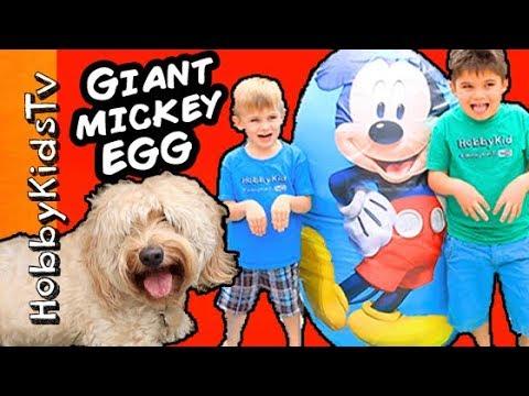 Worlds BIGGEST MICKEY MOUSE Surprise Egg! HobbyDog + Hulkbuster Marvel, Avengers Disney HobbyKidsTV